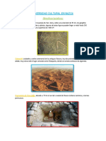 Diversidad Cultural en Nazca