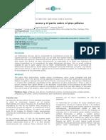 Piso Pelvico y Gestación.pdf