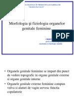 Org Genit Femin