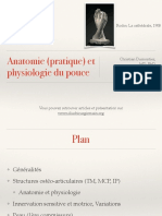 Anatomie Et Physiologie Du Pouce