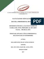 Determinantes de La Salud en Padres de Familia Del Nivel Primario .i.e. Ricardo Palma – Trujillo, 2015.