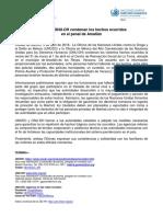ComunicadoConjunto ONUDH-UNODC HechosAmatlan