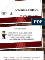 Psicologia Del Testimonio Diapositivas