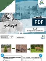 PPT Energía en El Ecosistema. Primero Medio v2