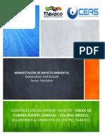 Proyecto Puente CEAS Tabasco.pdf