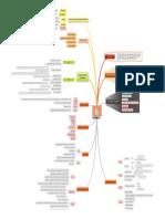 Intranatal Mind Map Putri