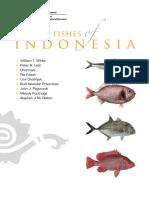 Market Ikan Indonesia