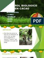 Control Biologico en Cacao