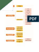 Geronto Prueba y Mapa Conceptual