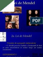 Genética - 2º Lei de Mendel - PH - Parte1