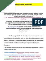 Adsorção - USP.pdf