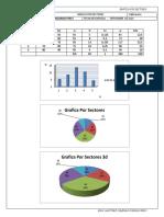 grafica por sectores.docx