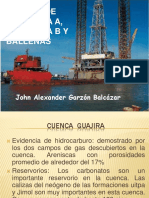 133666656-Campo-de-Chuchupa.pdf
