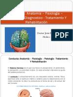 Conducta - Anatomía – Fisiología – Patología – Diagnostico - Tratamiento Y Rehabilitación