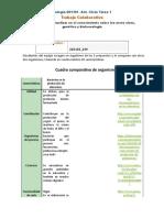 Formato Ciclo Tarea 1 Colaborativo (1)