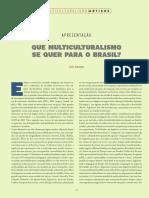 Desafios Da Antropologia Brasileira