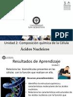 Clase 11 (2018) Acidos Nucleicos