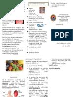 Trifoliado Gastritis