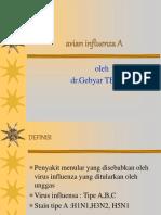 avian influenza A.ppt