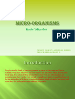Project Microorganisms