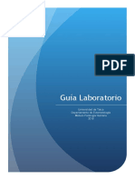 Guia laboratorio