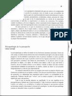 Florenzano y zegers Percepción