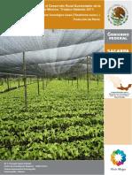 cacao_produccion.pdf