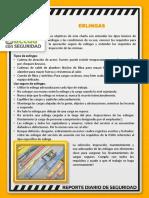 081217 Reporte Diario SSO