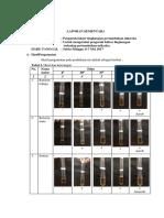 5802 Lapsem Faktor Lingkungan Rina