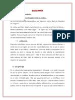 Baño Maríaa PDF