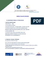 Model PLAN de AFACERI Electronic1