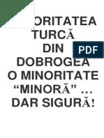 Frânturi Din Istoria Minorităţii Turce În Dobrogea