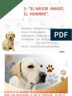 EL  PERRO  EL MEJOR  AMIGO DEL  HOMBRE.pptx