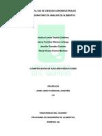 Preinforme # 4 analisis