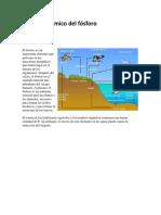 Ciclo Geoquímico Del Fósforo