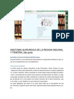 Anatomia Quirurgica de La Region Inguinal y Femoral