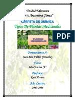 Plantas Medicinales Mini Monografia