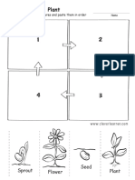Life Cycle of a Plant Preschool Worksheet