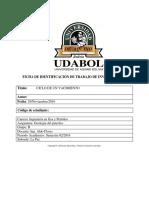 GEOLOGIA-DEL-PETROLEO.docx