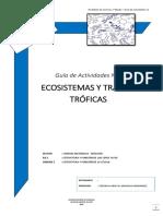 1°-Guía-Actividades-12-Ecosistema