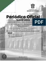Protocolo Defensa IDPP Mèxico