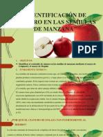 Metodo Toxicologico de La Manzana Completo