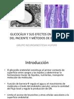 Glicocalix Final