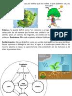 Introducción a la ingeniería Ambiental