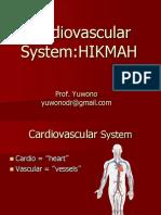 NNI Cardiovascularsystem 104349