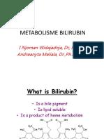 Blok 11 Metabolisme Bilirubin Lecture 2015