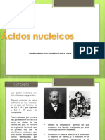 ac nucleicos final.ppt