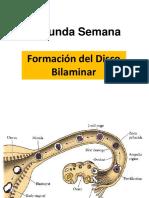 Clase Embriologia 2