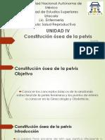 coxis 2.pdf