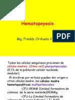 Hematopoyesis.ppt